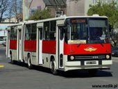 [Obrazek: Galeria-autobusy-2016-15-int.JPG]